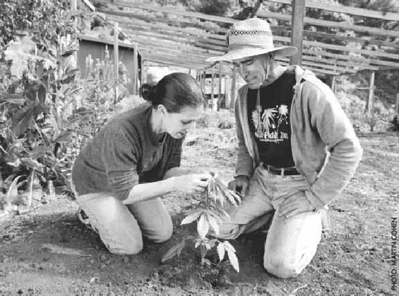 image of medical cannabis clinic operators and gardeners  Valerie and  Mike Corral